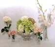 Beautiful Selection of Vases & Mason Jars